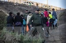 Canada chật vật xử lý dòng người tị nạn gia tăng ở biên giới với Mỹ