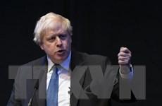 Các ứng cử viên có thể thay thế Thủ tướng Anh Theresa May