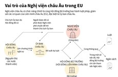 [Infographics] Tìm hiểu vai trò của Nghị viện châu Âu trong EU