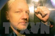 Thụy Điển không trì hoãn việc xem xét ra lệnh bắt giữ ông Assange