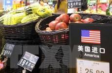 Doanh nghiệp Mỹ và Trung Quốc lao đao tìm đường đối phó với thuế quan