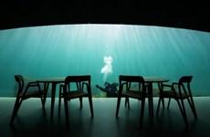Khám phá nhà hàng dưới lòng đại dương lớn nhất thế giới