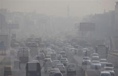 Ô nhiễm không khí - 'kẻ sát nhân' khiến 6,5 triệu người chết mỗi năm