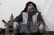 Thủ lĩnh IS Al-Baghdadi đang ẩn náu ở khu vực biên giới Iraq và Syria