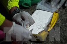Châu Âu đau đầu trước tình trạng buôn bán ma túy 'sôi động'