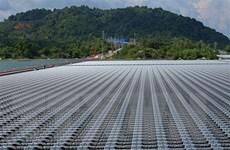 EVN sẽ đưa vào vận hành hơn 30 nhà máy điện Mặt Trời trong tháng 6