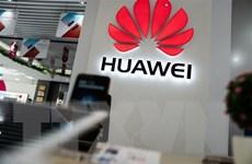 [Video] Lệnh cấm Huawei của Mỹ là vấn đề an ninh quốc gia