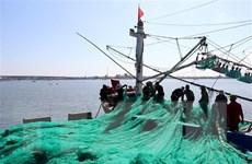 [Video] Ngư dân Quảng Ngãi ra khơi bám biển trên vùng biển chủ quyền