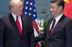 Tổng thống Donald Trump sẽ gặp Chủ tịch Tập Cận Bình tại Nhật Bản