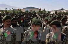Bộ Quốc phòng Afghanistan khẳng định đủ năng lực chống phiến quân