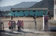 Hàn Quốc xúc tiến viện trợ 50.000 tấn gạo cho Triều Tiên