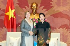Chủ tịch Quốc hội tiếp Trưởng đại diện UNICEF tại Việt Nam