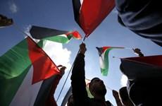 Oman quyết định mở Đại sứ quán để ủng hộ nhân dân Palestine