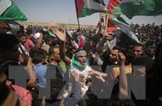 Người Palestine biểu tình phản đối kế hoạch hòa bình Trung Đông