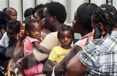 Mexico tăng cường đột kích, bắt giữ người di cư bất hợp pháp