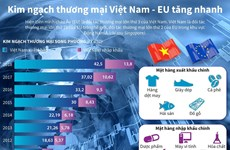 [Infographics] Kim ngạch thương mại Việt Nam-EU tăng nhanh