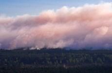Hàng trăm người phải sơ tán do cháy rừng bùng phát tại Đức