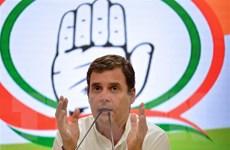 Ấn Độ: Chủ tịch đảng Quốc đại Rahul Gandhi thông báo từ chức
