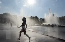 OCED chỉ đích danh 6 nước khiến biến đổi khí hậu trầm trọng hơn