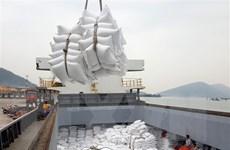Giá gạo Việt Nam và Thái Lan khó cạnh tranh được với Ấn Độ