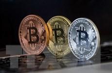 Đồng tiền điện tử Bitcoin xuống mức thấp trong hai tuần