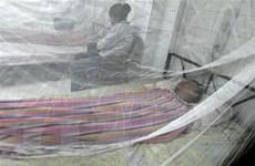 Philippines ban bố 'báo động quốc gia' về số ca mắc sốt xuất huyết