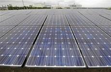 Năng lượng tái tạo sẽ trở thành nguồn năng lượng chủ lực của Nhật Bản?