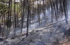 Trung Bộ nắng nóng gay gắt kéo dài, nguy cơ cao xảy ra cháy rừng