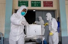 Đã có hơn 330 người nhiễm, 71 người tử vong vì cúm A ở Myanmar
