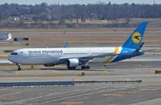 Một máy bay Boeing phải hạ cánh khẩn cấp do va chạm với chim