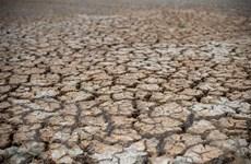 Hạn hán nghiêm trọng ở Trung Quốc, hàng trăm nghìn người gặp khó khăn