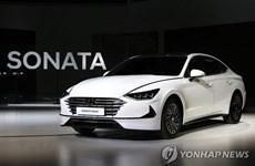 Hai hãng Huyndai, Kia bán hơn 1 triệu xe lai trong 10 năm qua