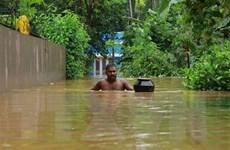 Hơn 200 người thiệt mạng do lũ lụt ở miền Nam và Tây Ấn Độ