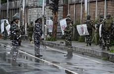 Lý giải sự im lặng đáng lưu ý của Trung Đông về tình hình Kashmir