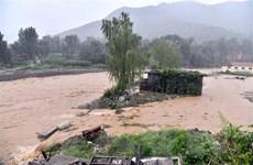 Liên hợp quốc sẵn sàng hỗ trợ Trung Quốc cứu hộ sau bão Lekima