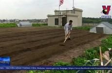 [Video] Trang trại trồng rau sạch trên mái nhà lớn nhất New York