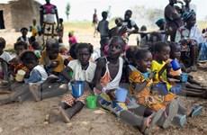 Liên hợp quốc cảnh báo một phần lãnh thổ Mali rơi vào tay khủng bố