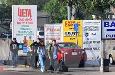 Mỹ: Nhiều bang kiện chính phủ về quy định cấp thị thực mới