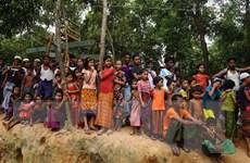 LHQ tái khởi động kế hoạch hồi hương người Rohingya về Myanmar
