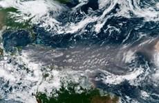 Các đám mây bụi Sahara 'làm dịu' các cơn bão ở Đại Tây Dương