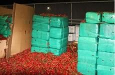 Hải quan Mỹ thu giữ gần 4 tấn cần sa ở biên giới với Mexico