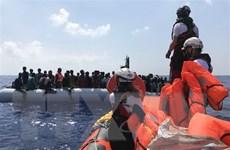 Nhiều nước EU tiếp nhận người di cư trên tàu Ocean Viking