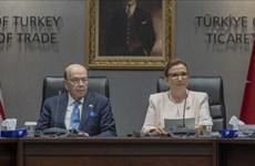 Thương chiến Mỹ-Trung mang lại cơ hội cho kinh tế Thổ Nhĩ Kỳ