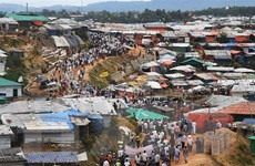 LHQ cảnh báo nguy cơ xung đột bạo lực với người Rohingya ở Myanmar
