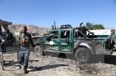 Afghanistan cam kết dừng chiến dịch quân sự gây thương vong dân thường