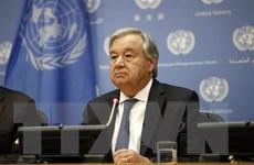 Tổng Thư ký Liên hợp quốc công bố thành lập ủy ban hiến pháp Syria