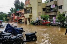 Mưa lũ tại miền Tây Ấn Độ khiến 16 người thiệt mạng và mất tích
