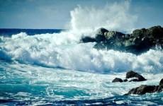 Liên hợp quốc công bố bức tranh khốc liệt về đại dương
