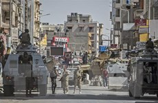 Ai Cập diệt nhiều phần tử khủng bố trong chiến dịch truy quét ở Sinai