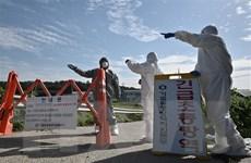 Hàn Quốc tăng cường biện pháp đề phòng lây lan dịch tả lợn châu Phi